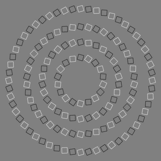 espiral inexistente, ilusión óptica de pinna
