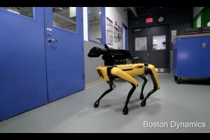 perros robot boston dynamics